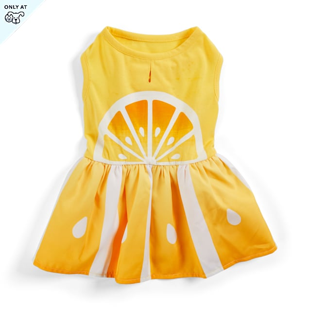 YOULY The Sophisticate Yellow Lemon-Print Dog Dress, XX-Small - Carousel image #1