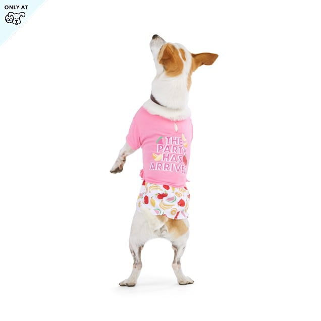 YOULY The Party Animal Fruit-Print Dog Dress, XX-Small - Carousel image #1