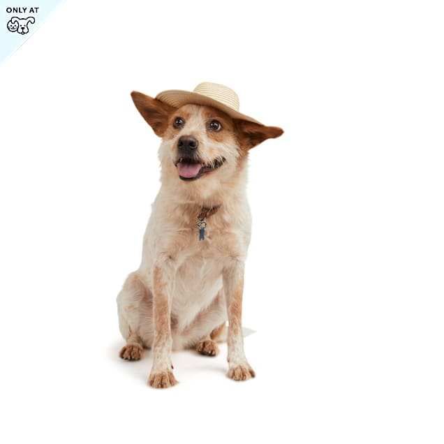 YOULY The Happy-Go-Lucky Dog Straw Hat, X-Small/Small - Carousel image #1