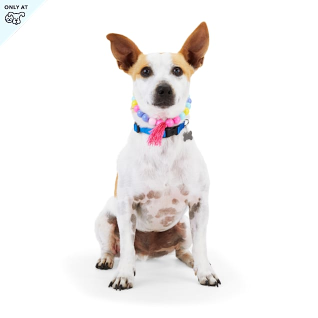YOULY The Happy-Go-Lucky Pastel Bead Dog Necklace, X-Small/Small - Carousel image #1