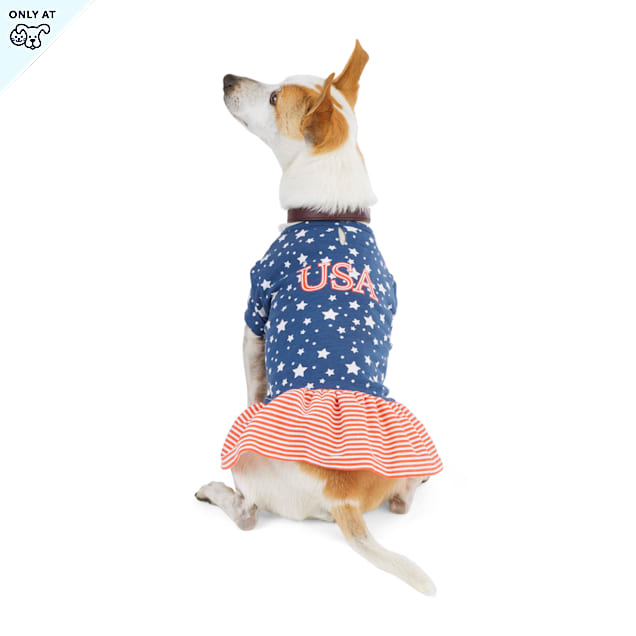 YOULY The Citizen Americana Collection USA Star Dog Shirtdress, X-Small - Carousel image #1