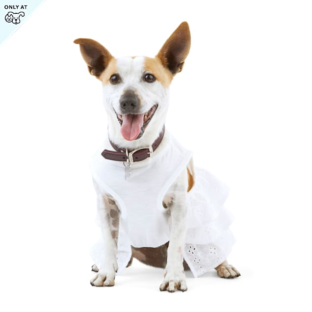 YOULY The Happy-Go-Lucky White Eyelet Dog Top, Small - Carousel image #1