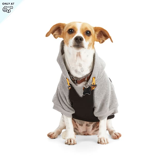 Reddy Black Colorblocked Dog Hoodie, X-Small - Carousel image #1
