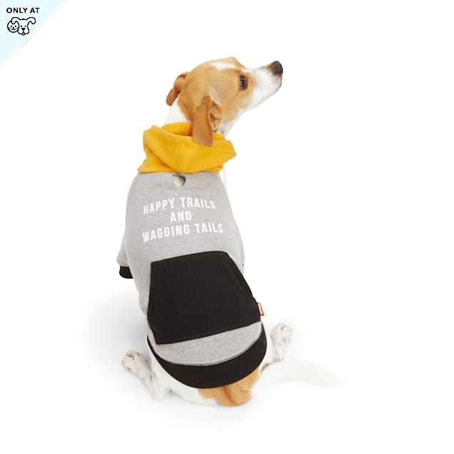 Reddy Happy Trails & Waggin' Tails Grey & Yellow Colorblocked Dog Hoodie, X-Small - Carousel image #1