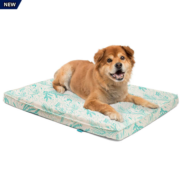 "Best Friends by Sheri Disney Aqua Little Mermaid CertiPUR Orthopedic Nap Mat for Dogs, 36"" L X 27"" W - Carousel image #1"
