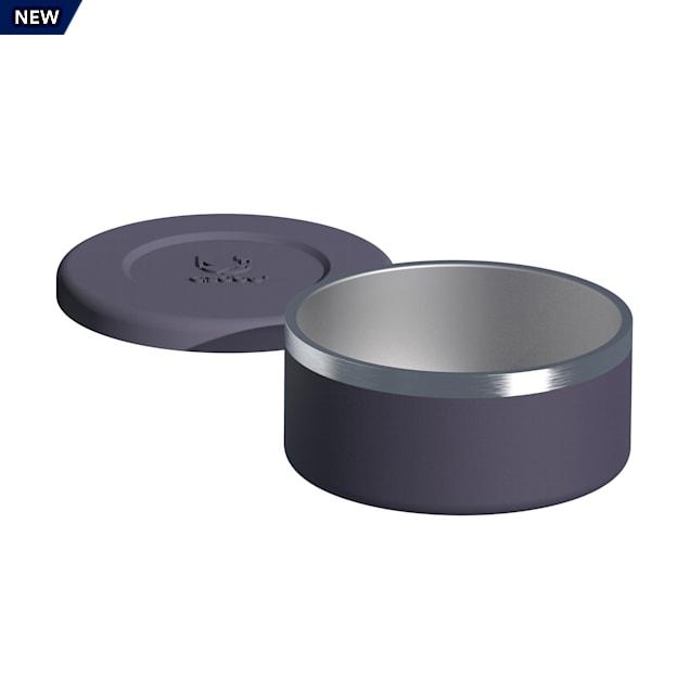 ASOBU The Bonita Insulated Purple Dog Bowl, 8 Cups - Carousel image #1