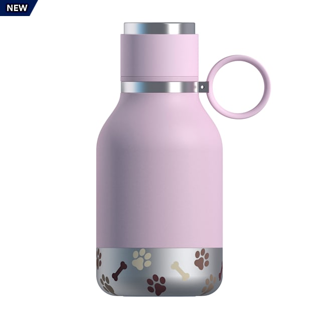 ASOBU Bailey Purple Bottle + Dog Bowl - Carousel image #1