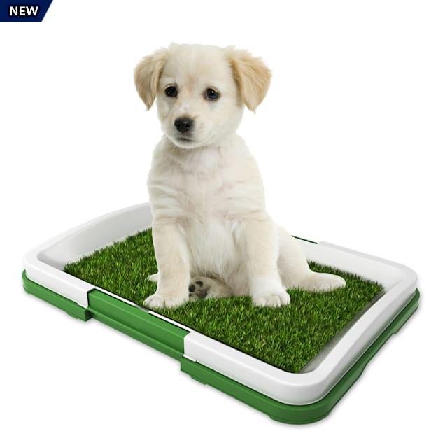 "Pet Pal Puppy Artificial Grass Potty Trainer Mat, 18.5"" L X 13.5"" W - Carousel image #1"