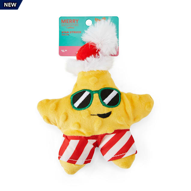 Merry Makings Star Struck Plush Dog Toy, Small - Carousel image #1