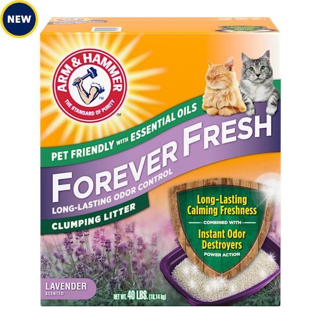 Arm & Hammer Forever Fresh Clumping Cat Litter Lavender, 40 lbs. - Carousel image #1