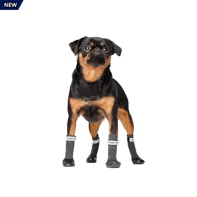 Canada Pooch Black/Gray Secure Sock Boots for Dogs, Small - Carousel image #1