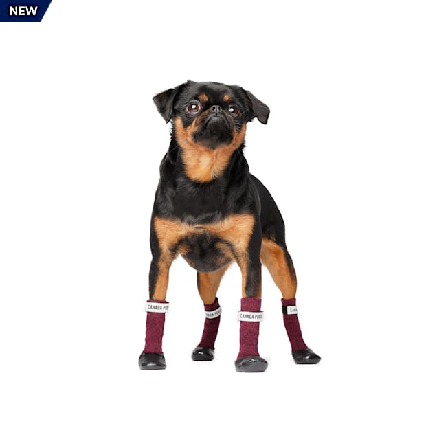 Canada Pooch Magenta/Black Secure Sock Boots for Dogs, Small - Carousel image #1