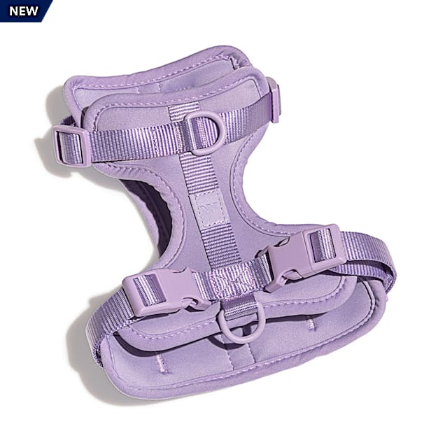 Wild One Lilac Dog Harness, Medium - Carousel image #1
