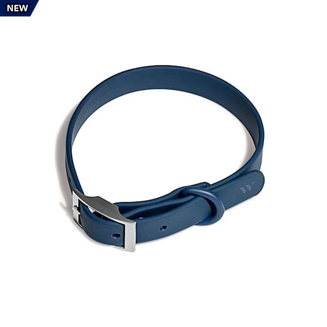Wild One Navy Dog Collar, Small - Carousel image #1