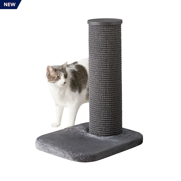 "Two by Two Maple 1 Level Grey Cat Tree, 18.5"" L X 15.4"" W X 24.4"" H - Carousel image #1"