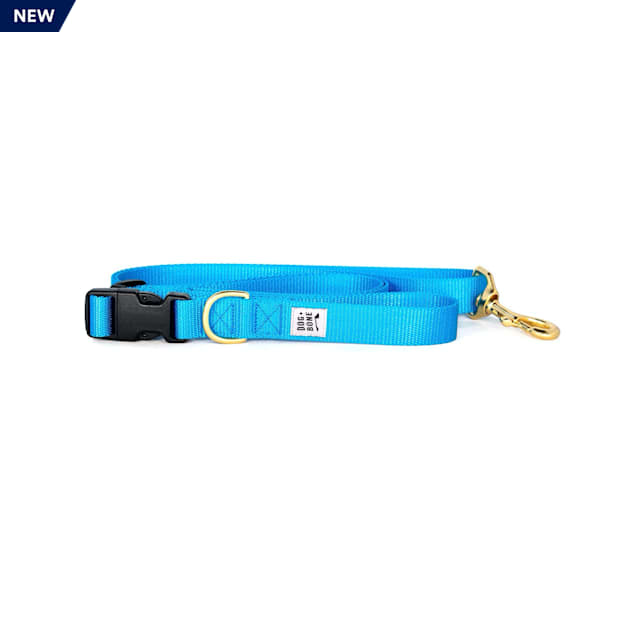Dog + Bone Blue Adjustable Dog Leash - Carousel image #1