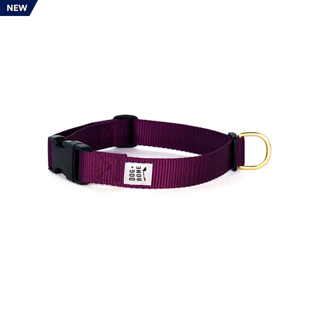 Dog + Bone Purple Snap Dog Collar, Small - Carousel image #1