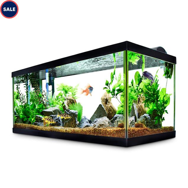 Aqueon Standard Glass Aquarium Tank 40 Gallon Breeder - Carousel image #1
