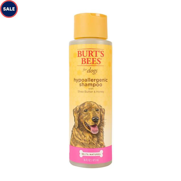 Burt's Bees for Dogs Hypoallergenic Shampoo, 16 fl.oz. - Carousel image #1
