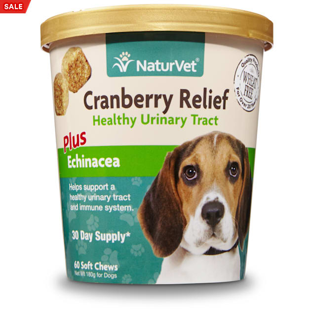 NaturVet Cranberry Relief Healthy Urinary Tract Dog Soft Chews, Pack of 60 chews - Carousel image #1