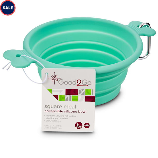 Good2Go Collapsible Silicone Pet Travel Bowl, 1 Cup - Carousel image #1