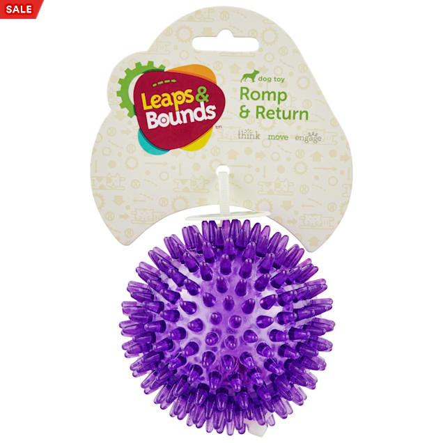 Leaps & Bounds Spiny Light-Up Ball Dog Toy, X-Small - Carousel image #1