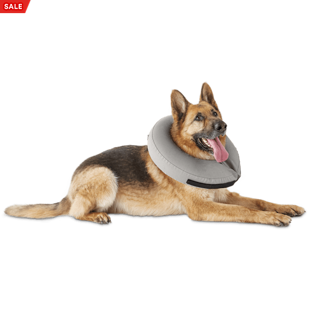 Well & Good Inflatable Collar for Dogs and Cats, Large/ X-Large - Carousel image #1