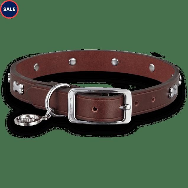 Bond & Co. Brown Leather Bone Stud Dog collar, For Neck Sizes 18-21, Large/Extra Large - Carousel image #1