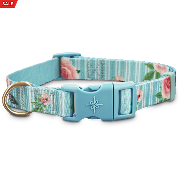 Good2Go Pink Rose Print Dog Collar in Blue, Large - Carousel image #1