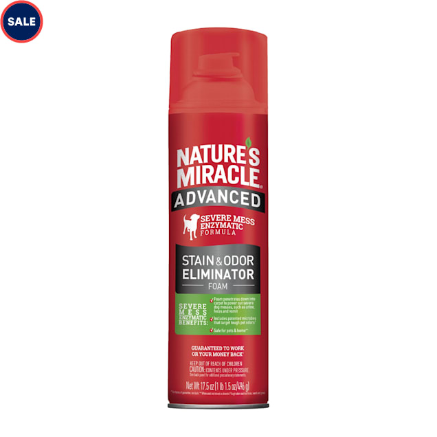 Nature's Miracle Advanced Stain & Odor Remover Foam, 17.5 oz. - Carousel image #1