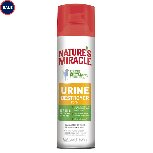 Nature's Miracle Urine Destroyer Stain & Odor Foam, 17.5 oz. - Carousel image #1