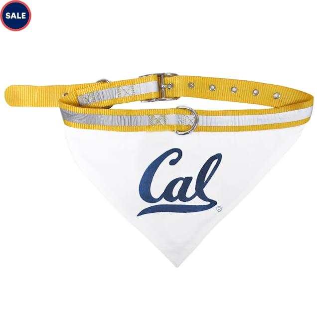 Pets First Cal Berkeley Golden Bears Collar Bandana, Large - Carousel image #1