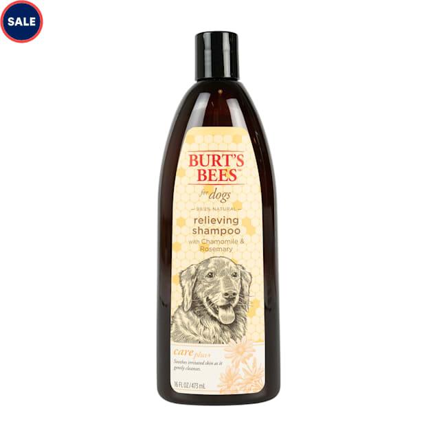 Burt's Bees Care Plus+  Relieving Chamomile & Rosemary Dog Shampoo, 16 fl. oz. - Carousel image #1