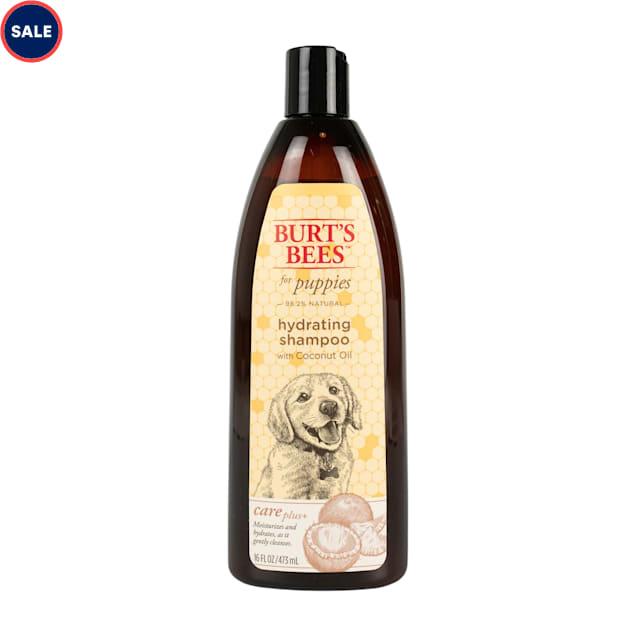 Burt's Bees Care Plus+  Hydrating Coconut Oil Puppy Shampoo, 16 fl. oz. - Carousel image #1