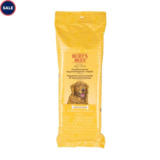 Burt's Bees Honey Hypoallergenic Multipurpose Dog Wipes, Count of 50 - Carousel image #1