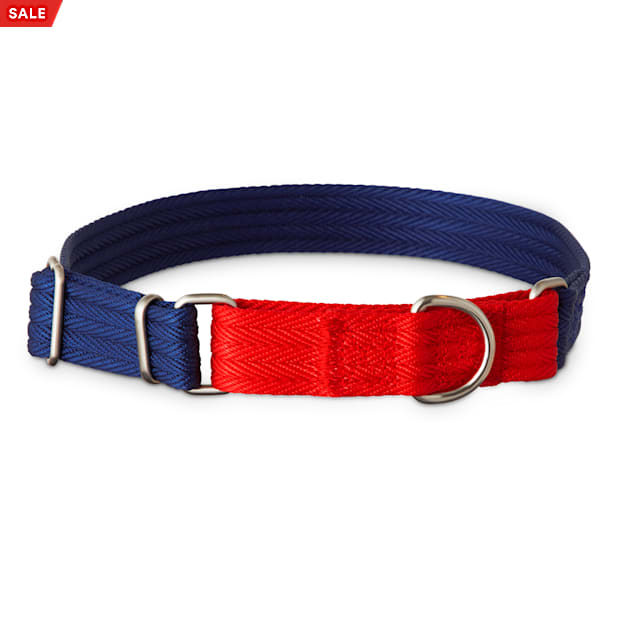 Good2Go Red and Blue Two Tone Martingale Dog Collar, Medium - Carousel image #1