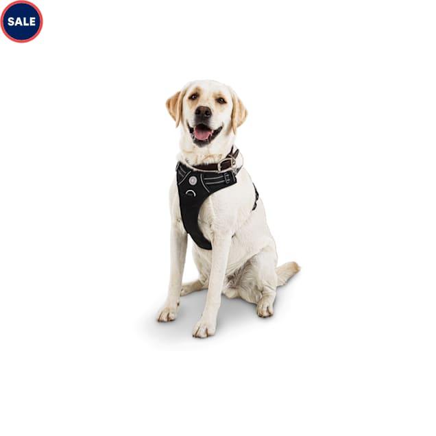 Good2Go Black Front Walking Dog Harness, Large - Carousel image #1