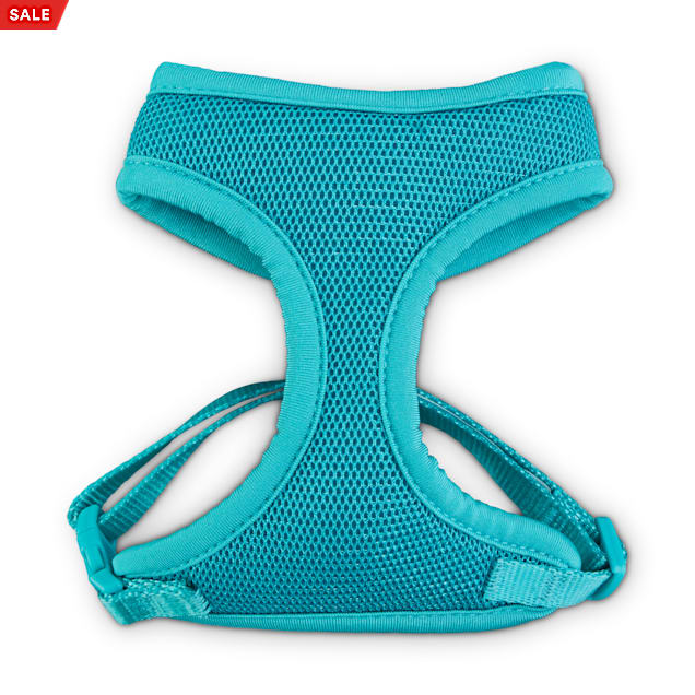 Good2Go Teal Cat Harness and Leash Set - Carousel image #1