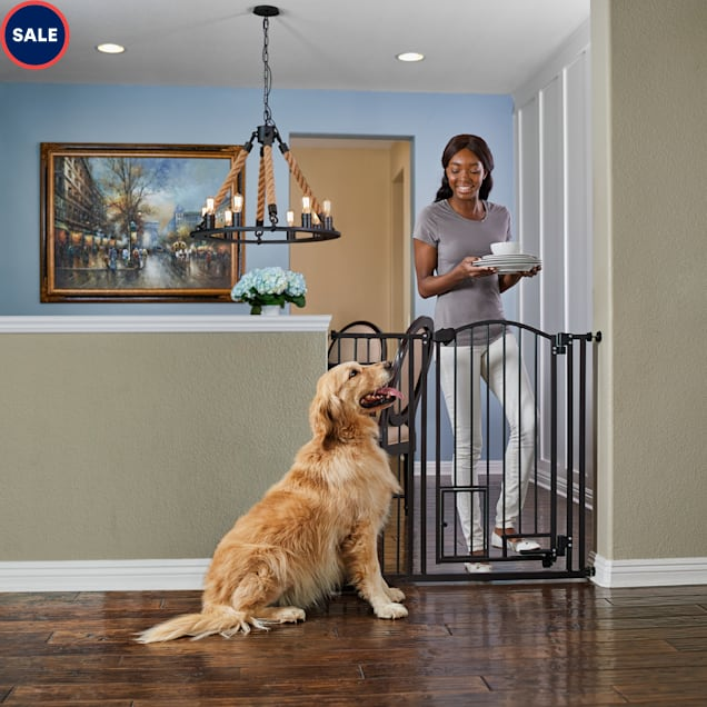 """EveryYay In The Zone Extra-Tall Arched Walk-Through Pet Gate, 29-43.5"""" W X 38.5"""" H - Carousel image #1"""