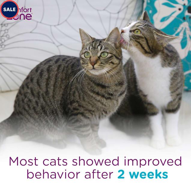 Comfort Zone Multicat Control Diffuser Kit, 3.24 fl. oz., Pack of 2 - Carousel image #1
