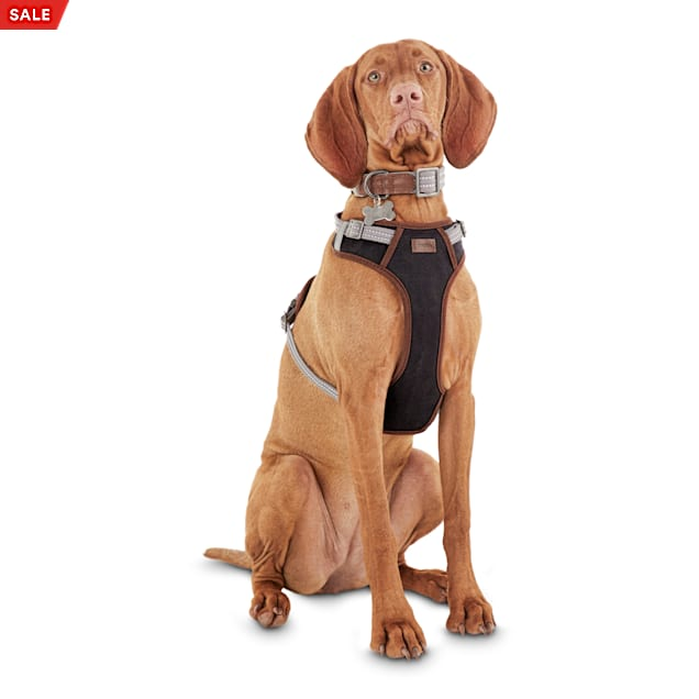 Reddy Gray Dog Harness, Medium - Carousel image #1