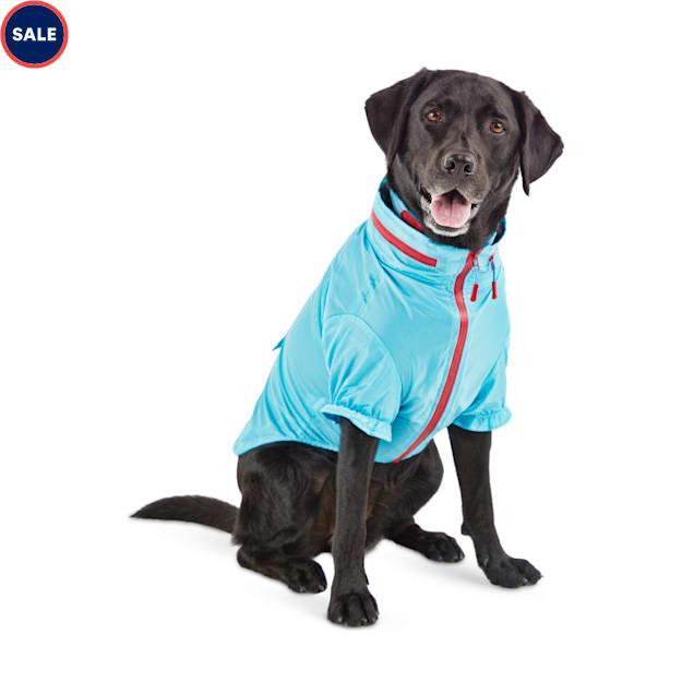 Reddy Cerulean Blue Dog Windbreaker, Medium - Carousel image #1