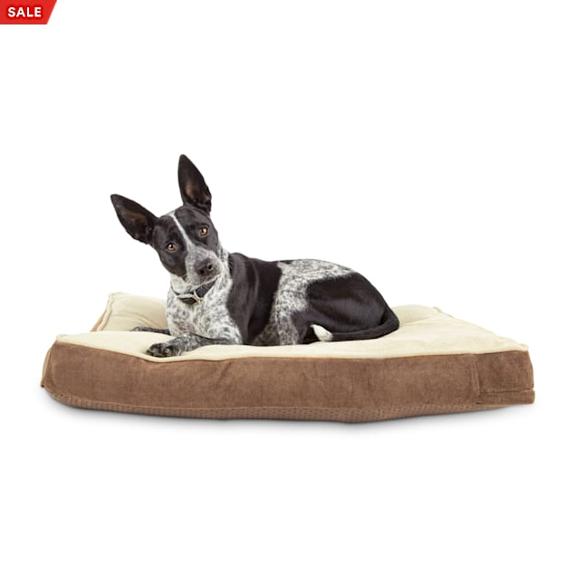 """EveryYay Essentials Snooze Fest Brown Lounger Dog Bed, 33"""" L X 24"""" W - Carousel image #1"""