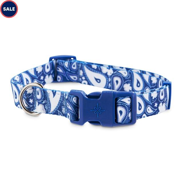 Good2Go Blue Paisley Dog Collar, Large - Carousel image #1