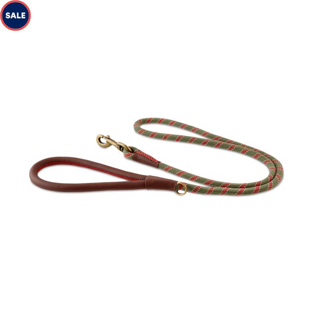 Reddy Olive Bi-Color Rope Dog Leash, 5 ft. - Carousel image #1