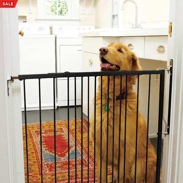 "Cardinal Gates Any Angle Duragate Black Pet Gate, 41.5"" L X 2"" W X 29.5"" H - Carousel image #1"