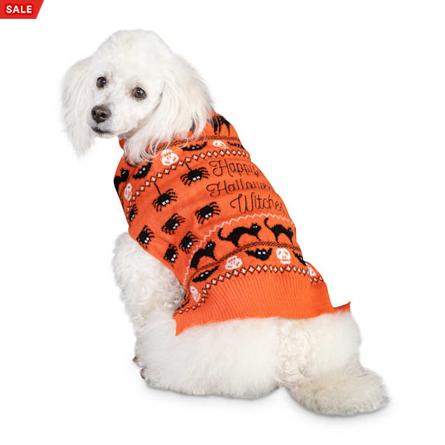 Bootique Wildly Wicked Pet Sweater, XX-Small - Carousel image #1