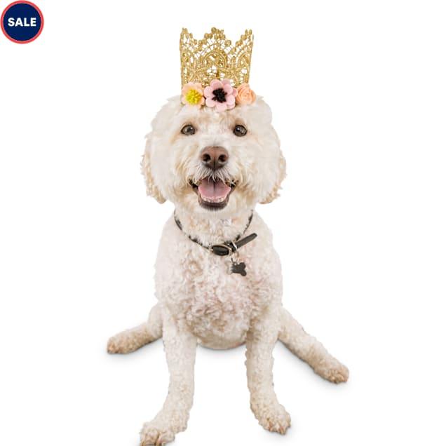 Bond & Co. Birthday Girl Dog Crown, Small/Medium - Carousel image #1