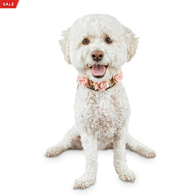 Bond & Co. Flower Girl Dog Necklace, Small/Medium - Carousel image #1