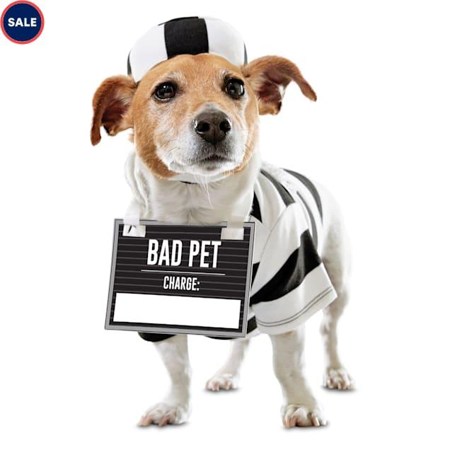 Bootique Crooked Cutie Prisoner Pet Costume, XX-Small - Carousel image #1